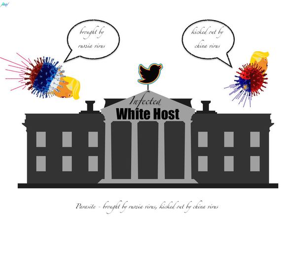 infected white host